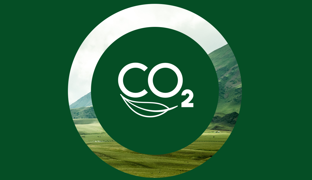 CO2 mobile